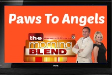 Morning Blend - PTA